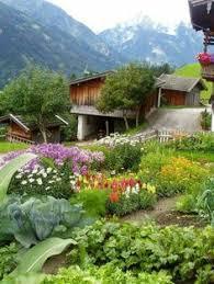 grow a pretty front yard vegetable garden homestead urban farm