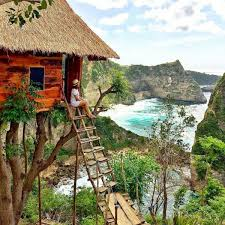 airbnb versi indonesia bali bungalow treehouses bungalow and indonesia