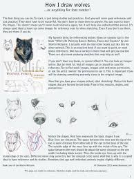how i draw wolves by chenneoue on deviantart