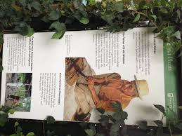 wild medicine new york botanical garden chefs u0027 consortium