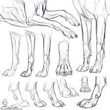 drawing of a dog paw drawing art ideas
