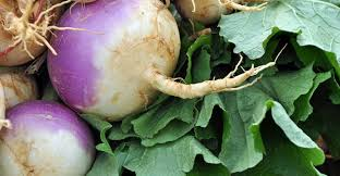 A List Of Root Vegetables - detailed list of different types of turnips
