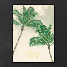 tropical cards florida palm trees cards