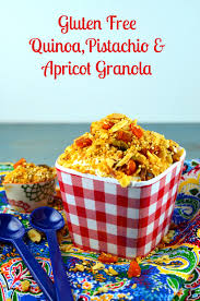 gluten free passover products gluten free passover recipes part 4 pistachio almond apricot
