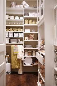 Kitchen Pantry Shelving by Modular Kitchen Pantry Shelves Design Ideas