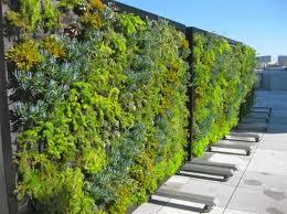 green living partition inhabitat u2013 green design innovation