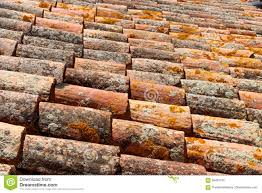 Lichen Covered Spanish Terracotta Roof Tiles Stock Photo Image