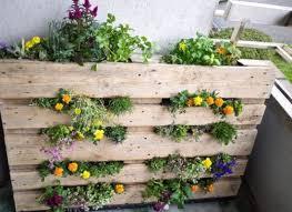 grow it vertical diy wood pallet garden huffpost