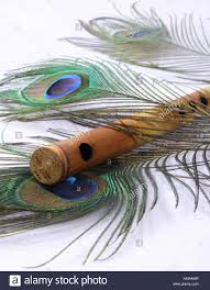 Stock Feather Flags Indian Flute With Peacock Feather Stock Photo Royalty Free Image