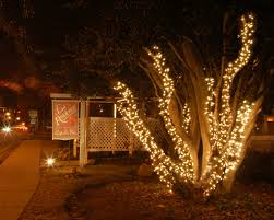 commercial christmas decoration u0026 lighting company raleigh durham