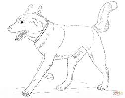 husky coloring pages printable 14 realistic husky coloring pages