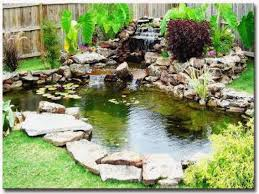 Small Backyard Fish Pond Ideas Garden Fish Ponds Designs Christmas Lights Decoration