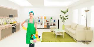 best house cleaning tips for your lovely house saint jacques