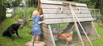 creative chicken coops elegant repurposed trailer coop community