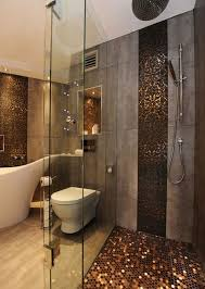 Bathroom Walk In Shower Luxury Shower Walk In Pennies Showers And Bathtubs