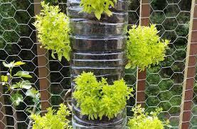 what is vertical gardening garden culture magazine