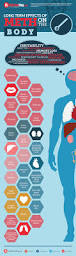 long term effects of meth on the brain infographic long term effects of meth on the body infographic