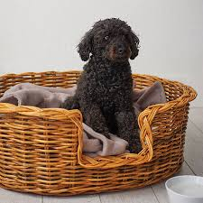 Rattan Baskets by Natural Oval Rattan Pet Basket For Cats Or Dogs By Charley Chau