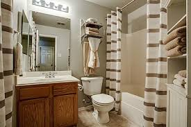 apartment bathroom decorating ideas brown bathroom decor green and brown bathroom decorating ideas