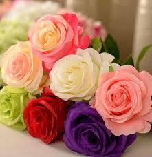 valentine roses pictures u2013 savingourboys info