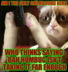 Grumpy Cat Christmas Memes - merry christmas from grumpy cat kinda imgflip