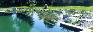 natural swimming pool designs lightandwiregallery com