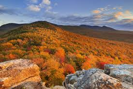Mountains In Usa Map by Chart This Year U0027s Fall Foliage In The Us With This Interactive Map