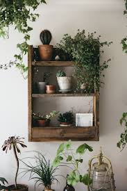 filling a space with plants and arranging them on rustic pallet
