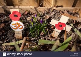 poppy hindu om and little poppy remembrance cross 2 lobed british