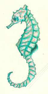939 best watercolor fish shells u0026 corals images on pinterest