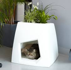 how about a green house for your dog or cat modern indoor kennels