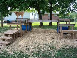54 best backyard ideas for dogs images on pinterest dog