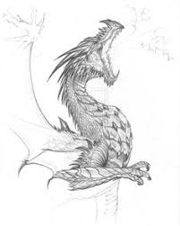 pin by t field on dragon pinterest dragons drawings and