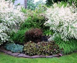 Shrub Garden Ideas Luxury Landscaping Bushes Ideas 48 Photos Christophersherwin