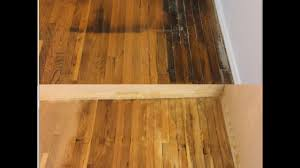 Refinished Hardwood Floors Before And After Pictures by How To Remove Pet Urine Stains From Wood Floors Guaranteed Youtube