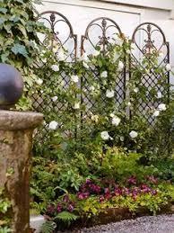 hydroponic gardening grow organic plants fast wall trellis