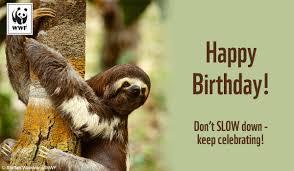 free ecards birthday birthday ecards from wwf free birthday ecards world wildlife fund