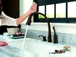 Faucets For Kitchen by Kitchen Faucet Spectacular Delta Leland Kitchen Faucet