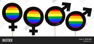 Sexuality Flags Homosexuality Pride Banner Image U0026 Photo Bigstock
