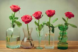 cut flowers extend the of your roses roses and smiles