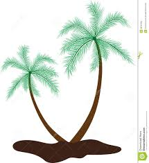 coconut tree stock vector image 38784993
