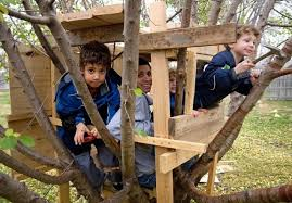 Image of a kids tree house