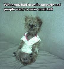 Tired Dog Meme - 34 memes that hit home for people who always wake up late