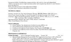 pl sql developer resume sample sql developer resume 9 unusual