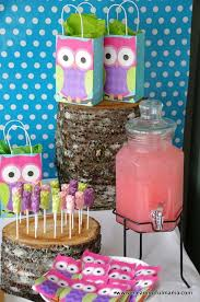 best 25 owl decorations ideas on diy owl themed