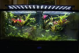 best led light for planted tank led lights for planted freshwater aquariums ing best led lighting