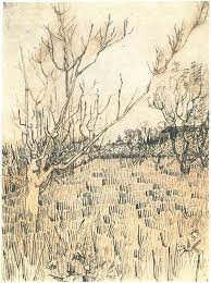 best 25 van gogh drawings ideas on pinterest van gogh