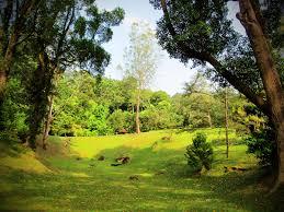 agoda lexus penang lexis suites penang botanical gardens lexis suites penang malaysia