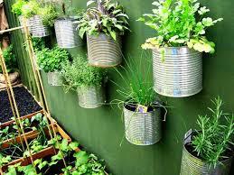 How To Make Vertical Garden Wall - vertical garden design adding natural look to house exterior and