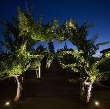 Low Voltage Landscape Lights Kit by Low Voltage Landscape Lighting Kits Uplinghting In Backyard